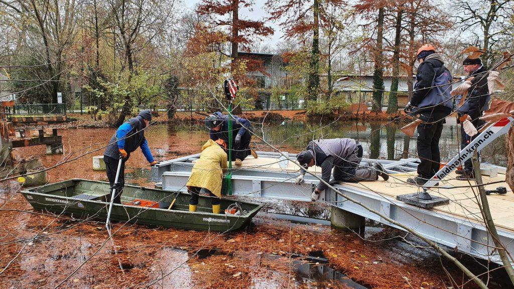 Besuchersteg - Tierpark Basel-3
